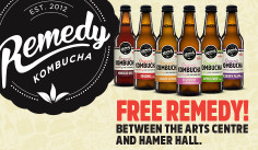 Remedy Kombucha, good for your gut!